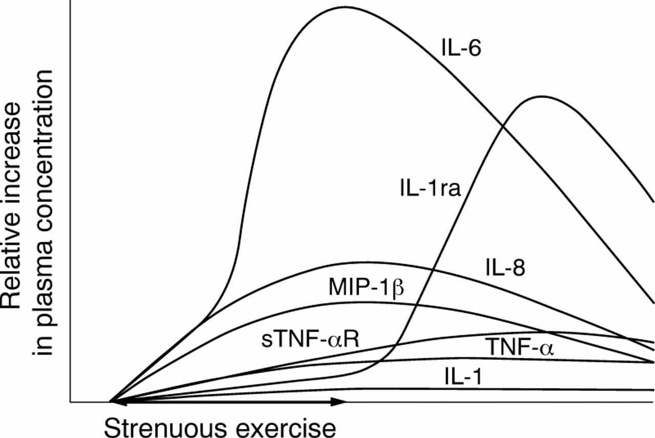 effects of exercise on lymphocytes and cytokines british journal   figure