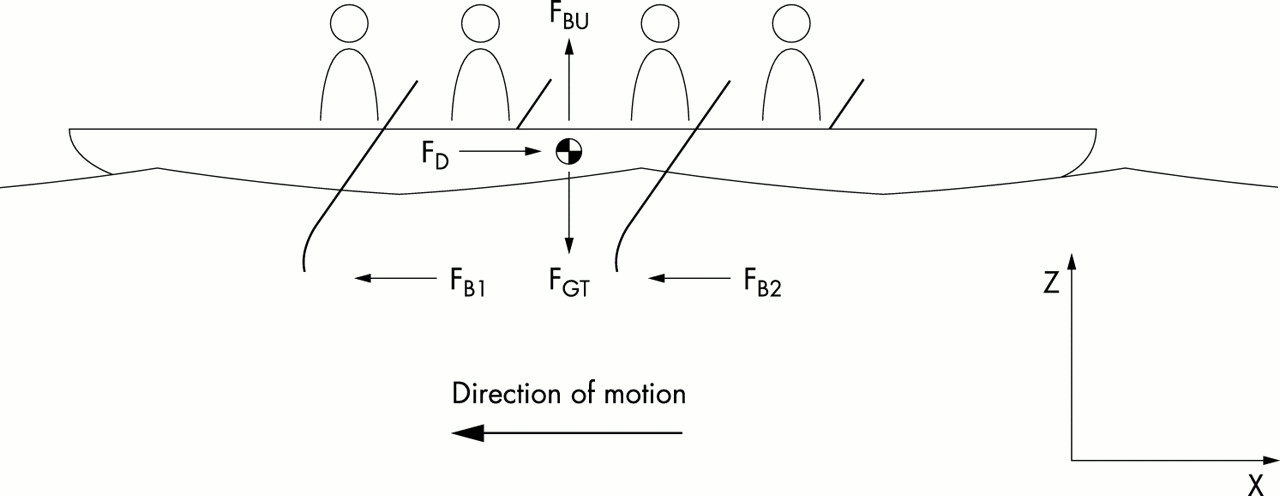 A biomechanical review of factors affecting rowing