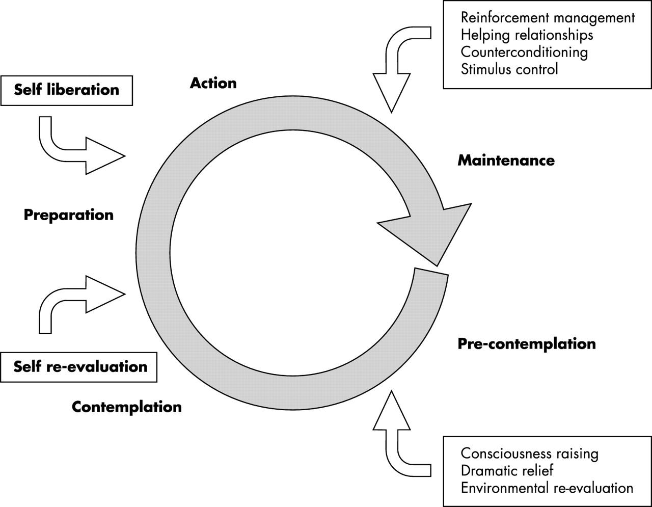 Behavioral Change Models