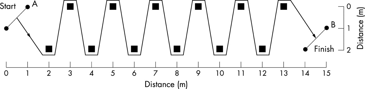 evaluation of the reliability of two field hockey specific sprint and dribble tests in young