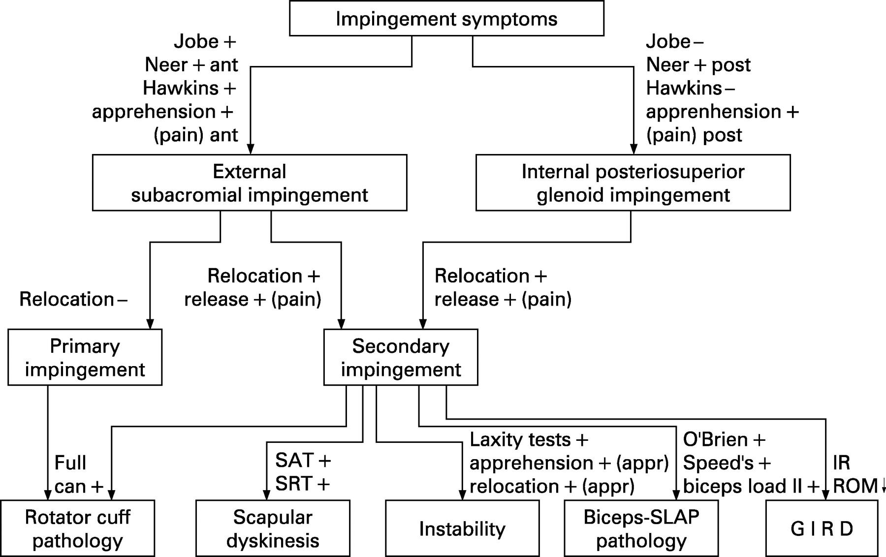 Screening The Athlete S Shoulder For Impingement Symptoms