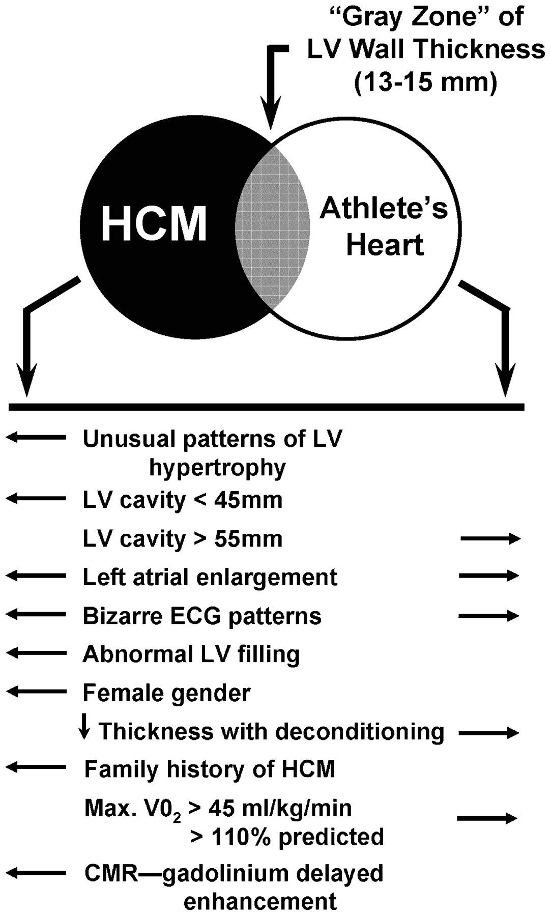 distinguishing hypertrophic cardiomyopathy from athlete s heart
