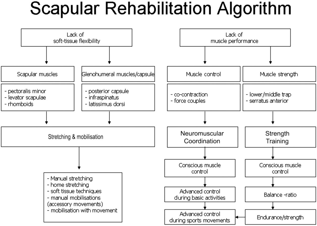 Rehabilitation Of Shoulder Impingement Syndrome And