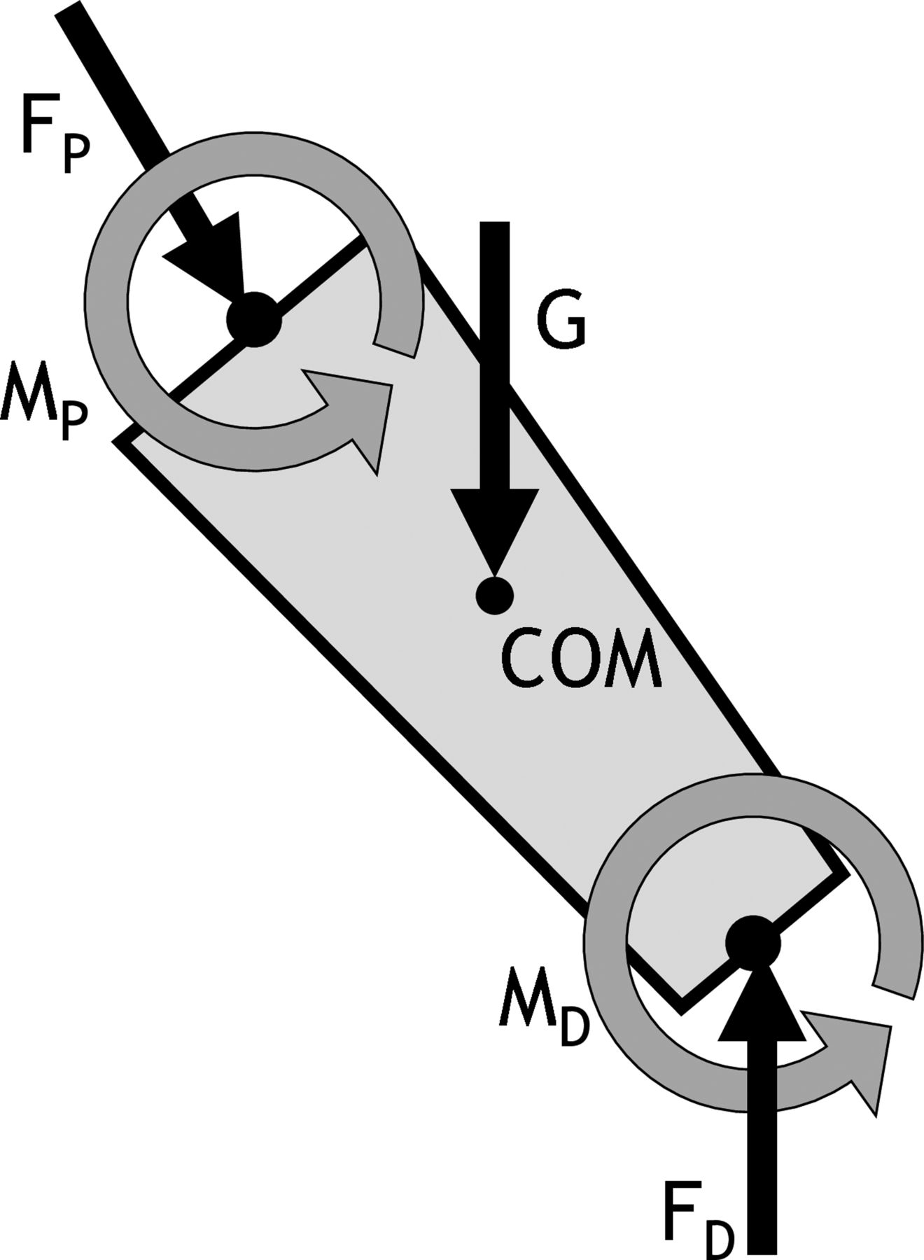 Artefacts In Measuring Joint Moments May Lead To Incorrect Clinical Freebody Diagrams Be Of Body Segments Involved This Movement Download Figure Open New Tab Powerpoint 1 A Free Diagram Segment
