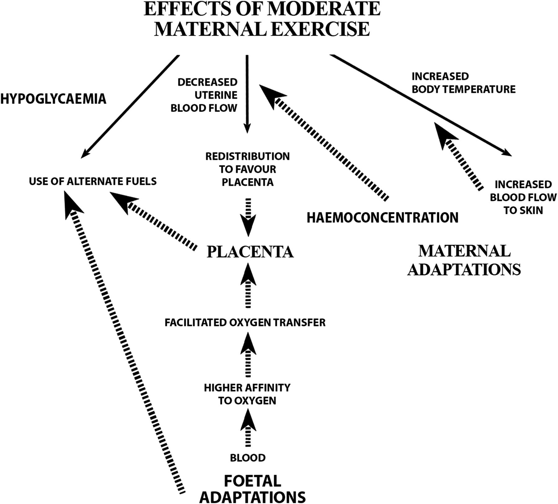 Exercise and pregnancy in recreational and elite athletes 2016 download figure nvjuhfo Image collections