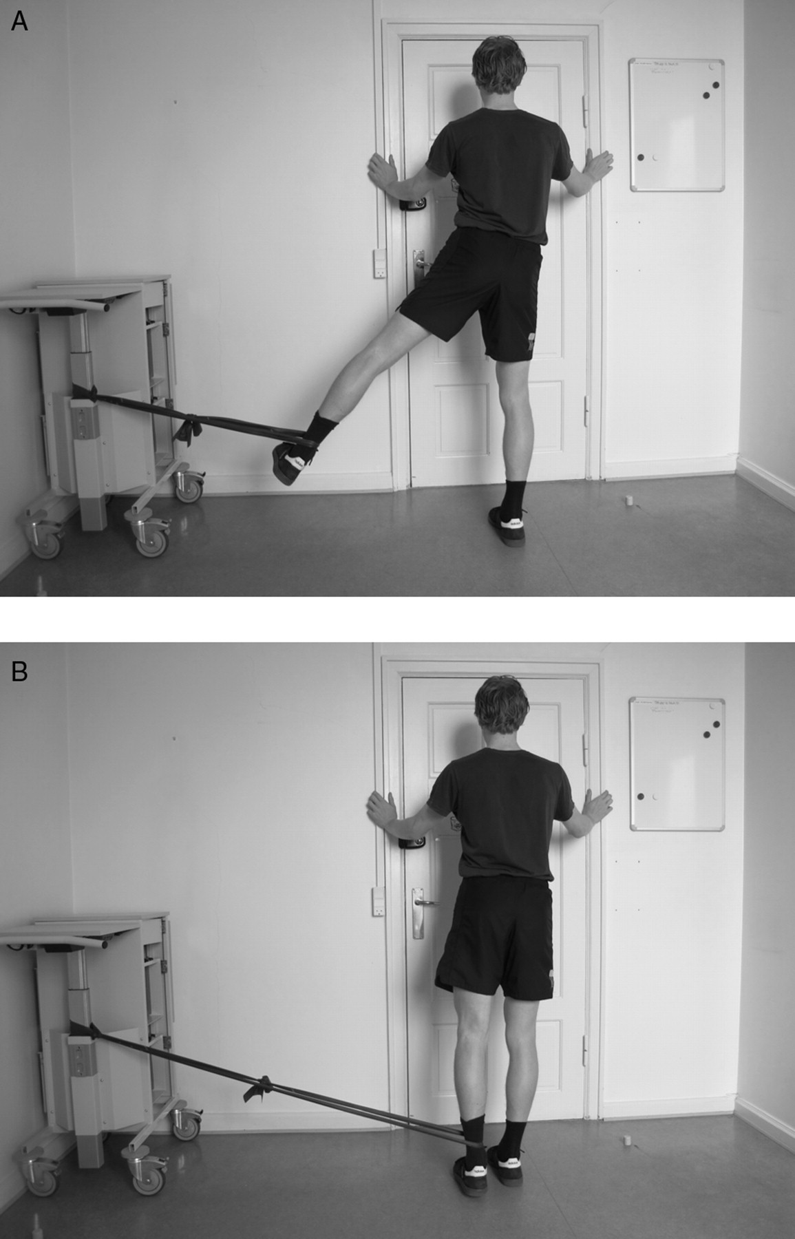 Eccentric strengthening effect of hip-adductor training with