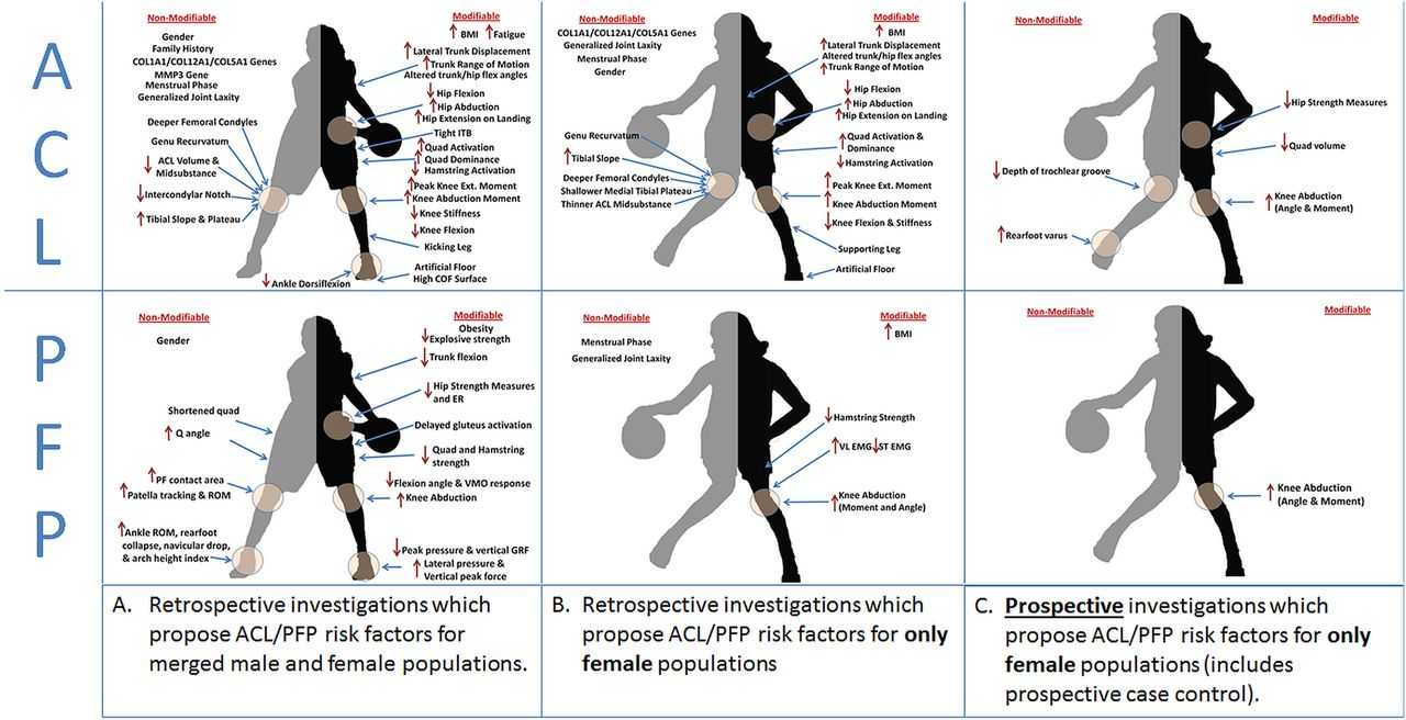 High knee abduction moments are common risk factors for ...