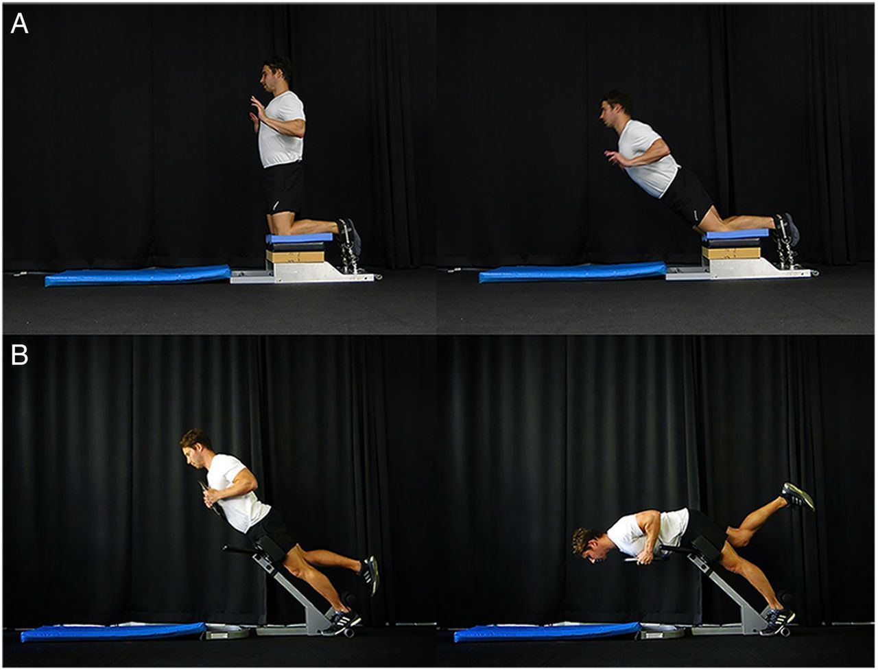 Impact of the Nordic hamstring and hip extension exercises