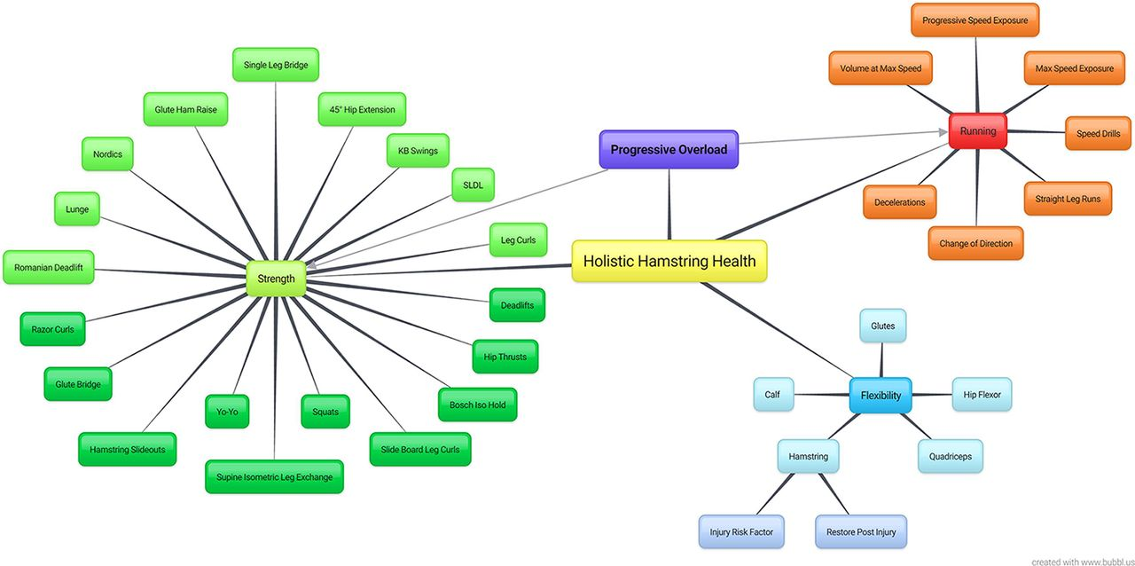 Holistic hamstring health not just the nordic hamstring exercise download figure pooptronica