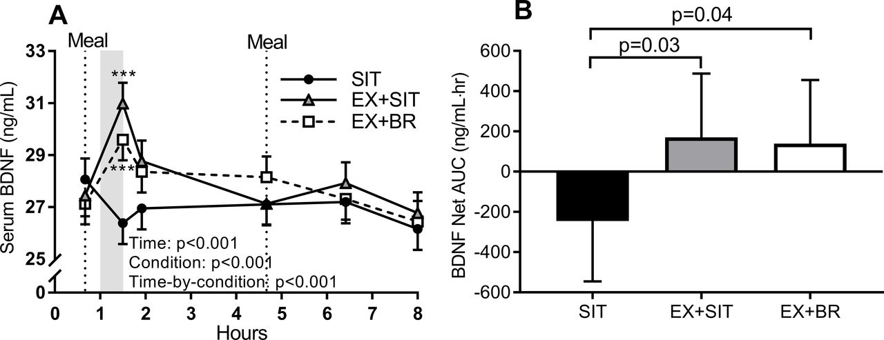 Distinct effects of acute exercise and breaks in sitting on